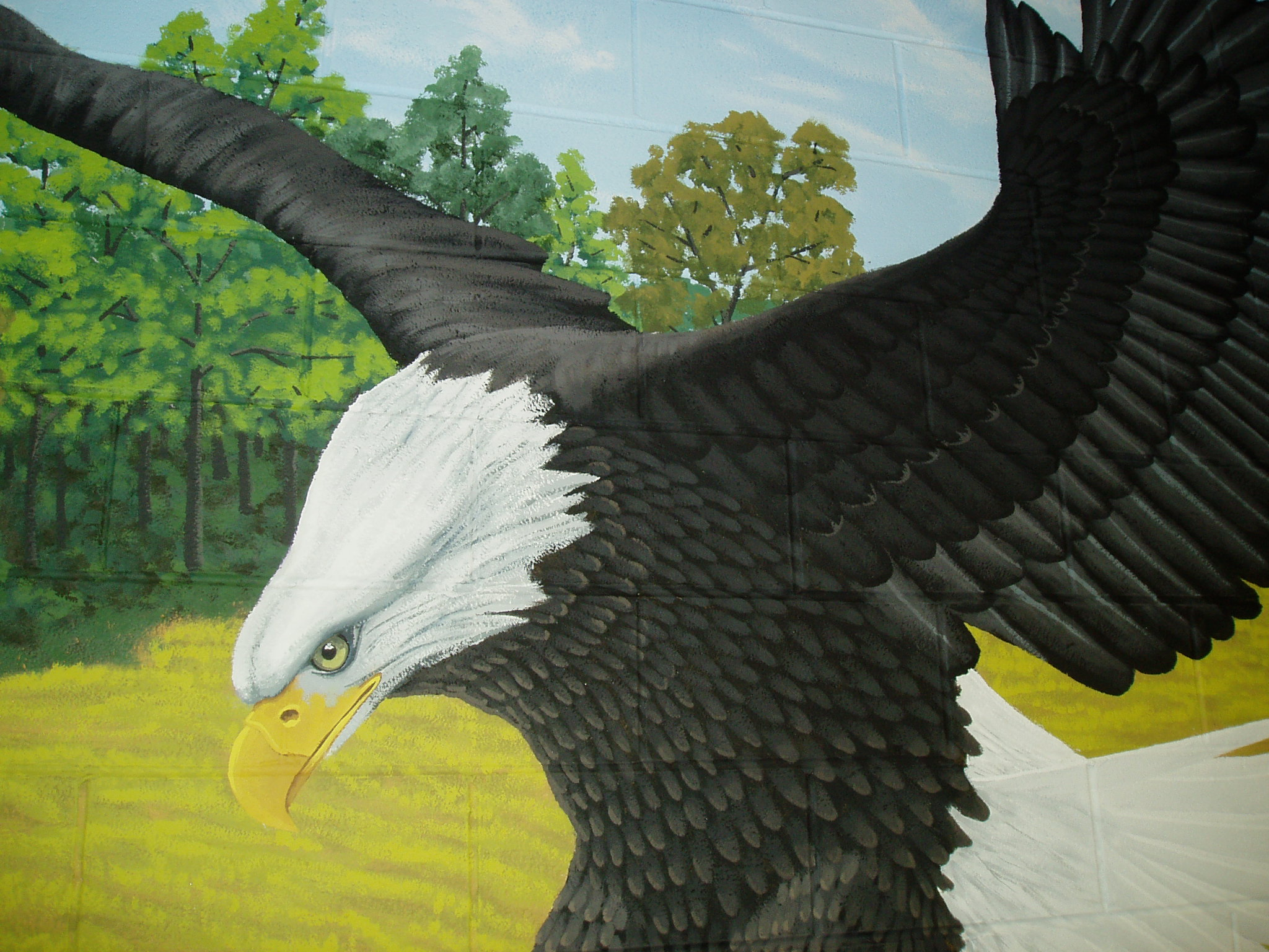 Edgewood Eagles Gymnasium Mural